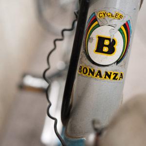 Logo Bonanza